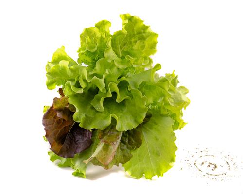 Ассорти салатов на развес
