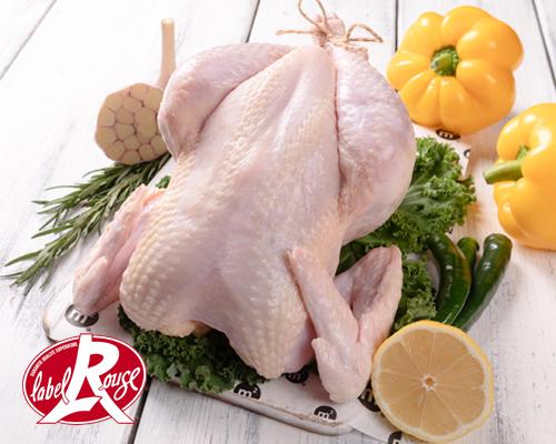Цыпленок-голошейка тушка